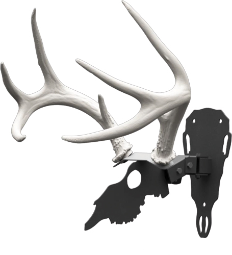 Hs Shed Antler Mounting Kit -