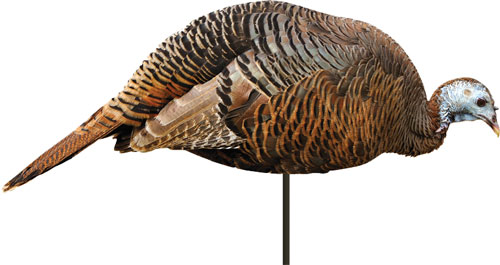 Montana Decoy Turkey Hen - Dinner Beele