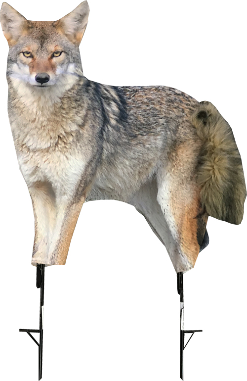 Montana Decoy Coyote Song Dog -